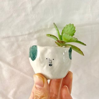 Small potted plants on your face - the desk plant healing small objects unique