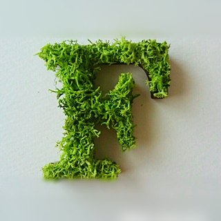 "Wooden alphabet objects (Moss) 5cm ""F"" × 1 point"
