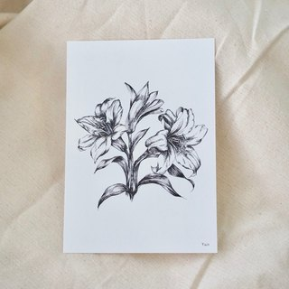 Lily postcard wood frame group hand-painted style printing