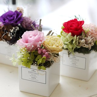 Flower ceremony design (not withered flower series) Japanese romantic rose potted flowers