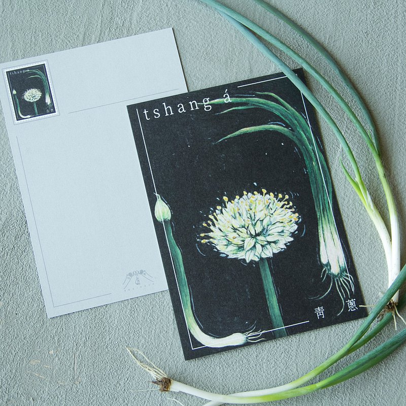 botanical postcards-scallion