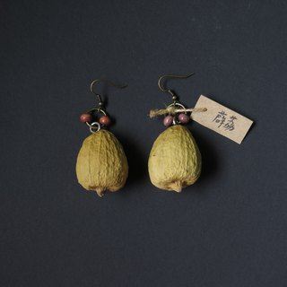 No.16 Xue Yu big fruit handmade earrings