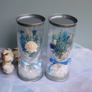 Sweet Time - White Sun Rose Blue and White Dry Flower Pot Gift Box Mini Hand Tied Small Bouquet