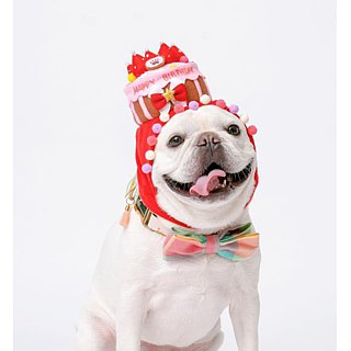 Customized birthday cake cap pet hat cap * L number