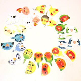 Rolia's hand made parrot waterproof sticker (set A-14 full set)