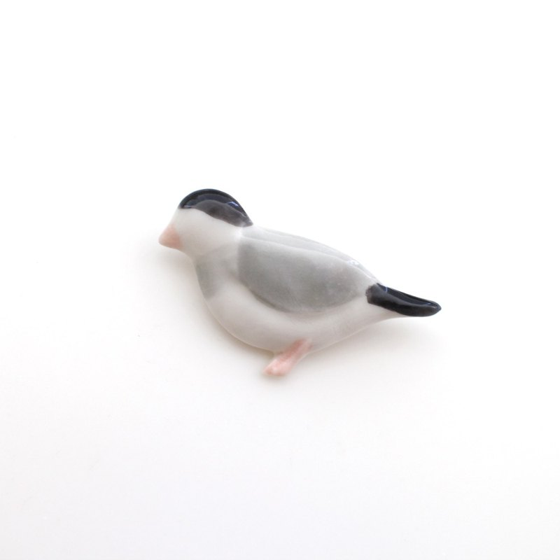 Java sparrow brooch