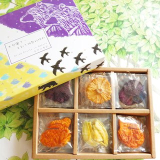 Happiness Fruit Shop-Mid-Autumn Star Bear Fruit Gift Box (12 in)