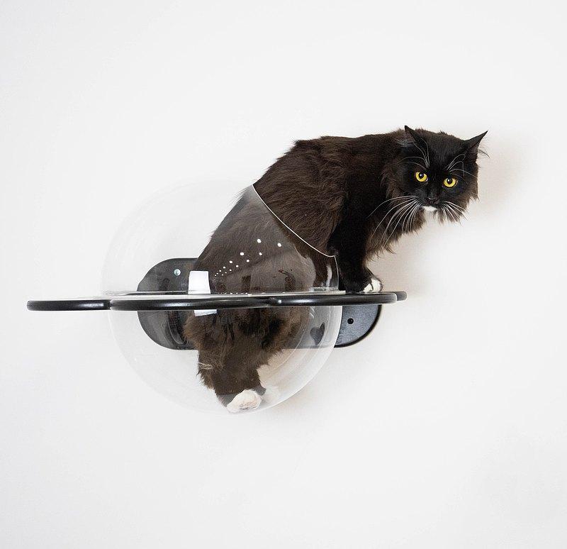 貓架子花形貓現代家具