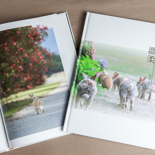 Rabbit Photography Book - Lonely Gentle