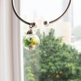 * Rosy Garden * Dried Green tone Daisies inisde glass ball on a sterling silver bangle