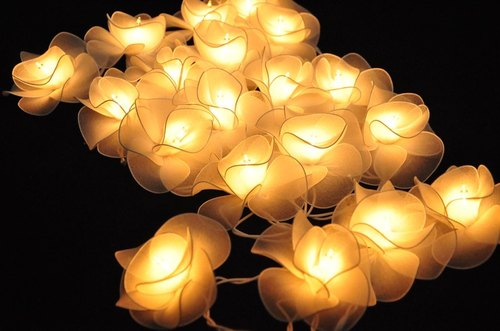 20 White Flower String Lights for Home Decoration,Wedding,Party,Bedroom,Patio and Decoration