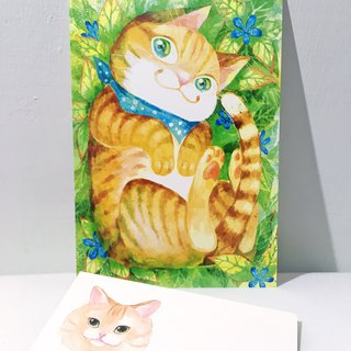 Soft-hearted orange cat / double-sided postcard postcard
