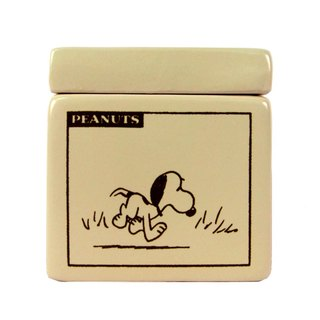 Snoopy Square Collection Box (Hallmark-Peanuts Snoopy Dress)