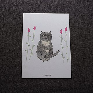 Ni.kou cat postcard