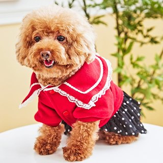 Pet clothes lace collar point skirt (red)