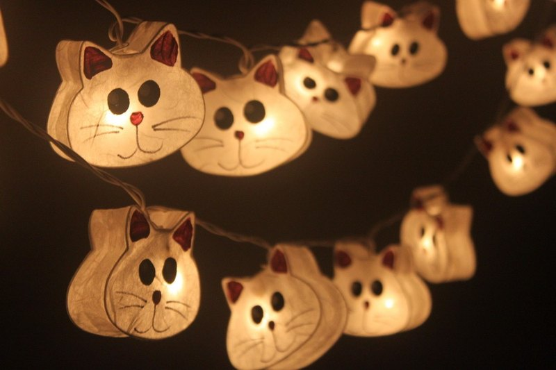 20 LED Battery Powered Hand paint Cat Paper Lantern String Lights for Home Decoration Wedding Party Bedroom Patio and Decoration