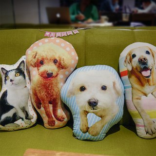 Customized X Pet Pillow / Photo Pillow (45cm)