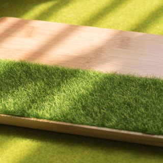 Grassy Bamboo Plate (S/M/L)