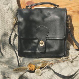 Leather bag _B015
