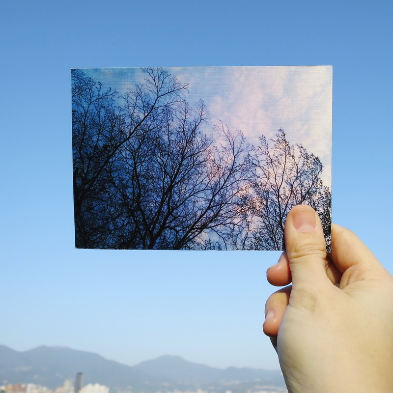 Quietly draw cool card / multifunctional storage postcard / treetop