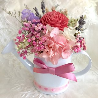 Masako sweet colorful shower eternal flower dry flower pot flower