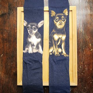 JHJ Design Canadian brand of high saturation knitting socks series Chihuahua dog (male) puppy dog ​​cute