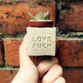 Love Much (to be more loving) ~! Magnet potted succulents
