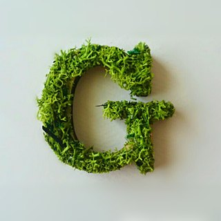 "Wooden alphabet objects (Moss) 5cm ""G"" × 1 point"