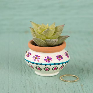 Painted style mini fleshy potted - cream white | PLNT009