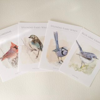 Birds postcard set H