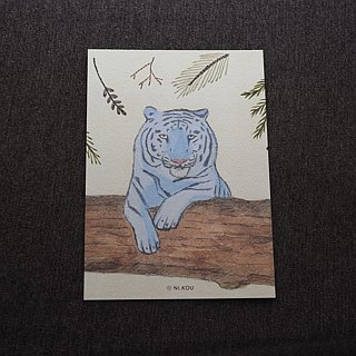 Ni.kou jungle tiger postcard