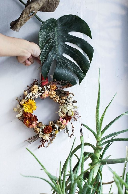 Flower Wreath !! 【Apollo Apollo】 dry wreath wreath space to give gifts