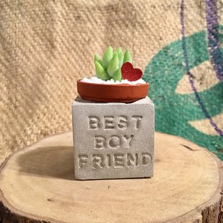 Best boyfriend magnet fleshy potted