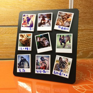 For Your PET!Set of 9 Polaroid Magnet with Black Frame Stand