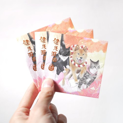 "CAT POCKET CAT POCKET ""Healthy and Reunion"" (10 pcs)"