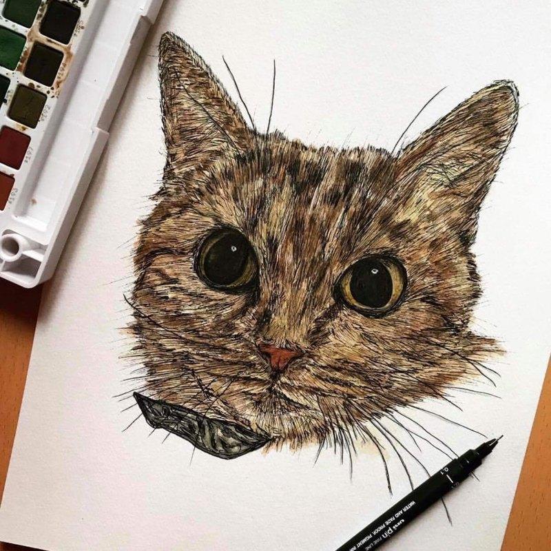 客製 寵物/植物/動物等 畫作-不畫人像