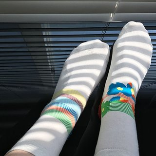 socks_blooming / flower / white / stripes