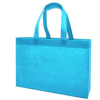 Additional purchase - non-woven bag (small)