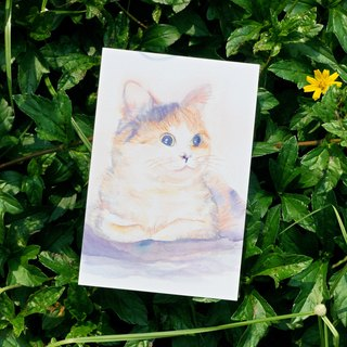 Lovely Animal watercolor postcard, Greeting card, Birthday card, print - CAT
