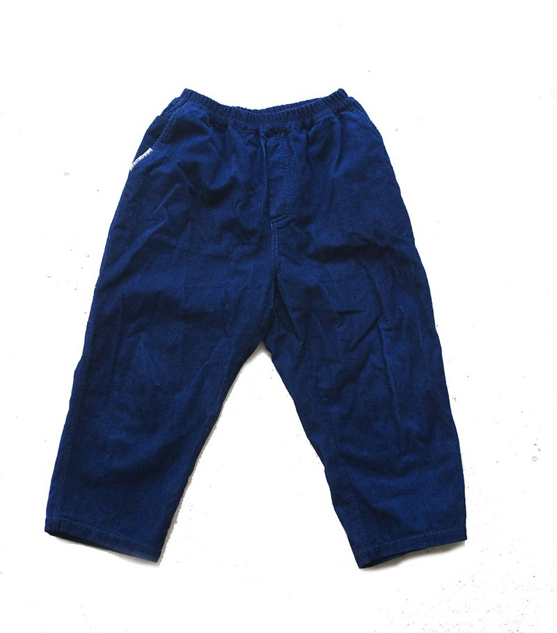 fete corduroy cropped pants indigo blue stained spines