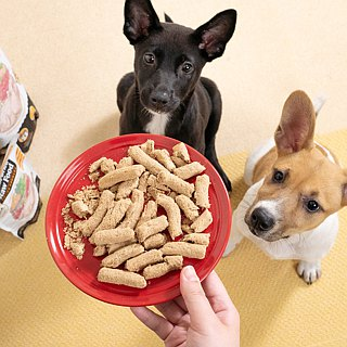 [dog staple food] dog freeze-dried staple food meal - Anxin chicken 80G/500G