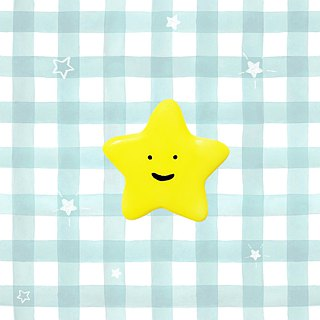 Little star ceramic pin
