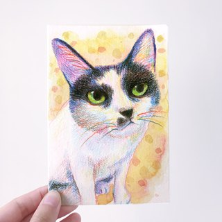 Pet cat and dog portraits custom-made professional paintings do not include picture frames