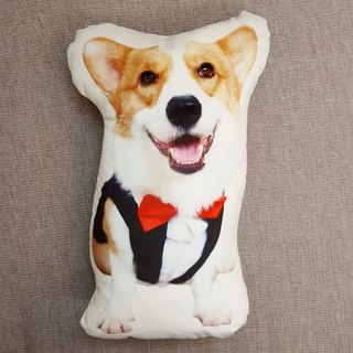 Pillows - Suit Edition
