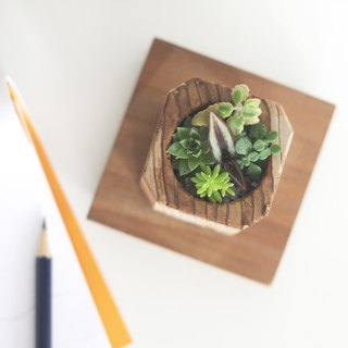 Forest Wooden Plant Pot