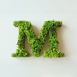 "Wooden alphabet objects (Moss) 5cm ""M"" × 1 point"
