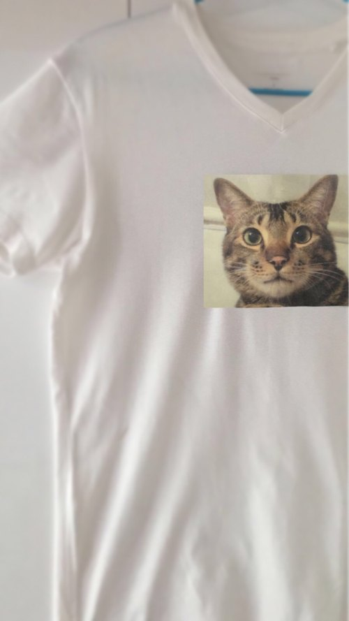 Cat Videos ironing shirt TEE (can be customized)