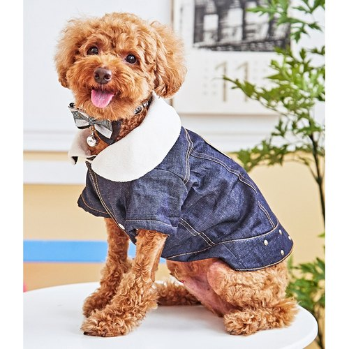 Pet clothes punk cowboy vest