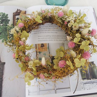 Micro sweet circle hand made of spring god came Japan petal green hydrangea Qianzihong alpine green moss dry wreath door wreath dry flower wreath exchange gift spot