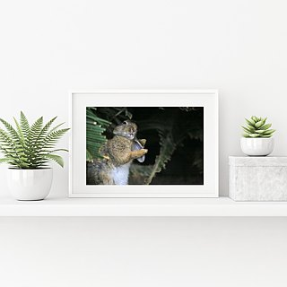 Limited edition of the original photography art of rabbits - charming